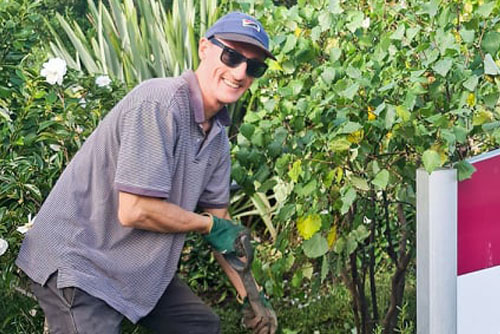 Ben shore project update tree planting blogpost